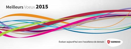 GERESO vous présente ses meilleurs voeux pour 2015
